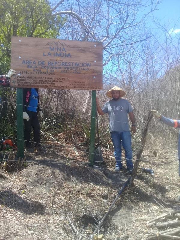 Zona de reforestación Concesión Real de la Cruz